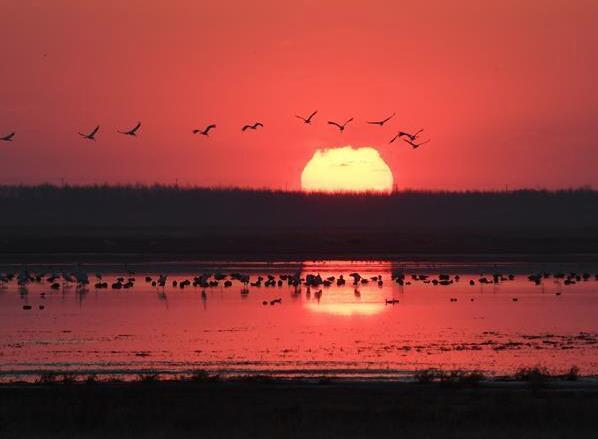 吉林分区域推进生态保护