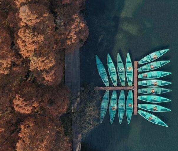 冬日西湖色彩斑斓