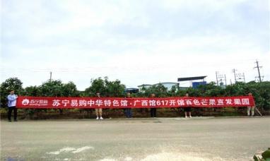 苏宁聚焦产品溯源 倾力打造中华特色馆·广西馆