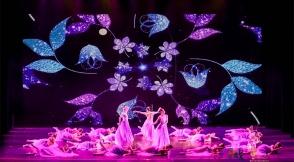 第十一届广西音乐舞蹈比赛在柳收官