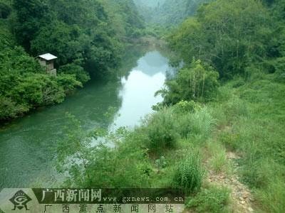 """""""十一""""黄金周森林游:龙虎山体验""""猴趣""""(多图)-广西"""