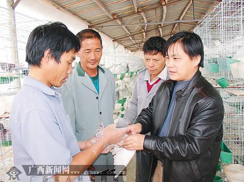 """马汉杰:带领农民""""养鸟""""的村支书(图)"""