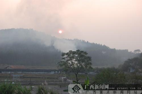 柴门闻犬吠,风雨养龟人:记南宁市旺春龟鳖养殖场