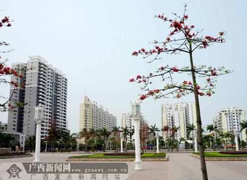 平果县旧城v旧城变新城城镇化率超30%(图)小学明星苏州图片