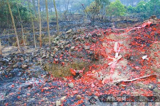 横县近百亩松树林突发大火 疑村民拜山放鞭炮引发