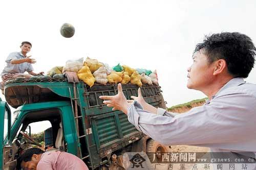 南宁百万吨果蔬即将上市 产销对接难题如何破解?