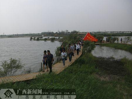 哈尔滨/媒体采访团来在哈尔滨金河湾湿地植物园进行采访。记者刘月摄