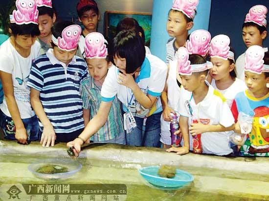 南宁市15名社区儿童畅游南宁海底世界(图)-广西新闻网