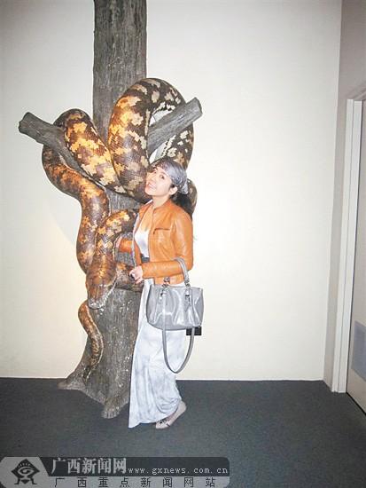 图片中那条巨大的蟒蛇,看了不禁使人为与它合照的人捏一把汗.