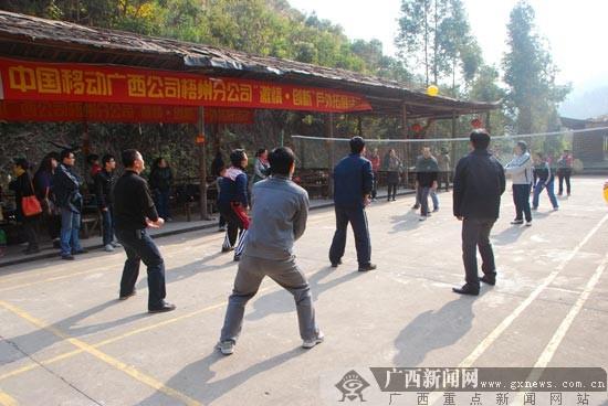 员工自由组合的气排球比赛高清图片