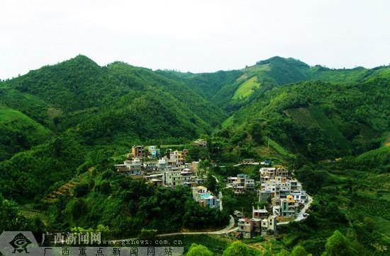 西林发展林业改善生态环境 人工造林面积10万公顷