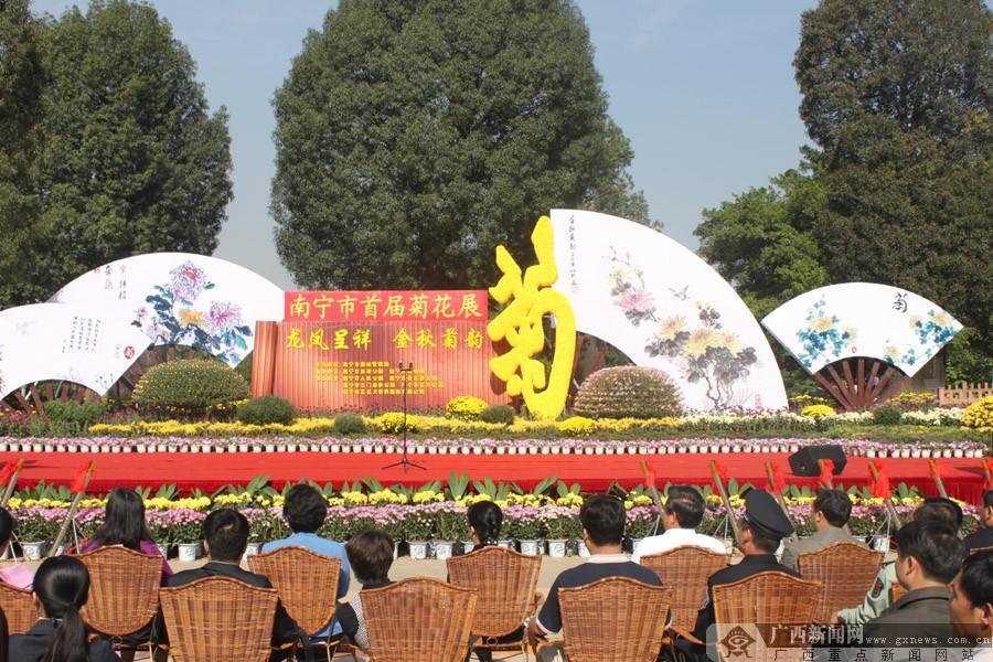 广西新闻网南宁11月18日讯(记者 吴婷婷)菊花是我国的传统名花,冷傲