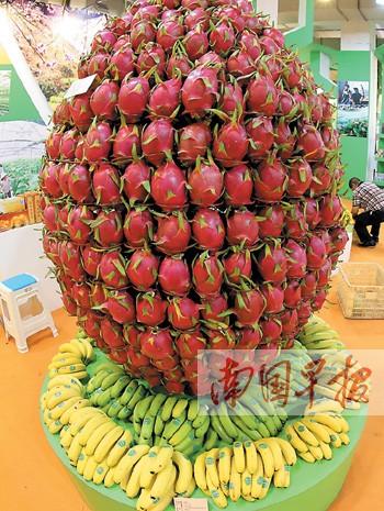 展厅中的火龙果,香蕉组合造型.图片