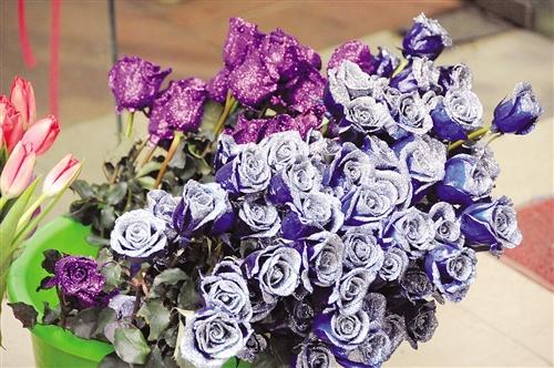 对于玫瑰花的涨价,不少网友都感叹,马年真是什么马上都涨了,但是
