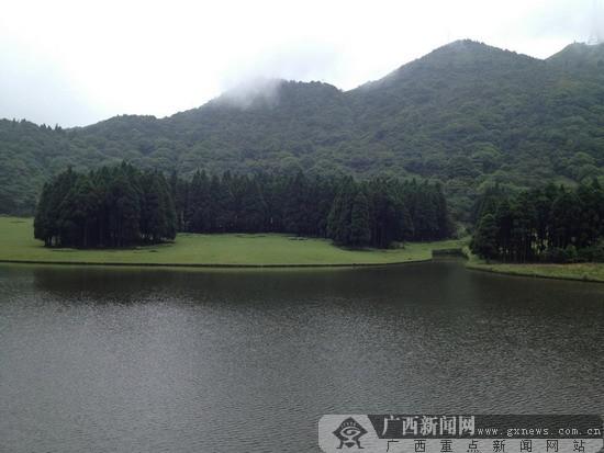 图片由桂平西山提供       广西新闻网南宁3月4日讯(记者 蒙灵)今年的