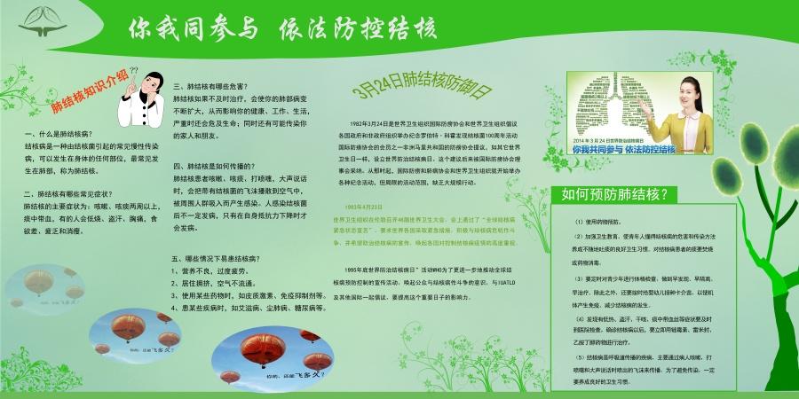 结核病防治知识宣传展板设计(5/13)