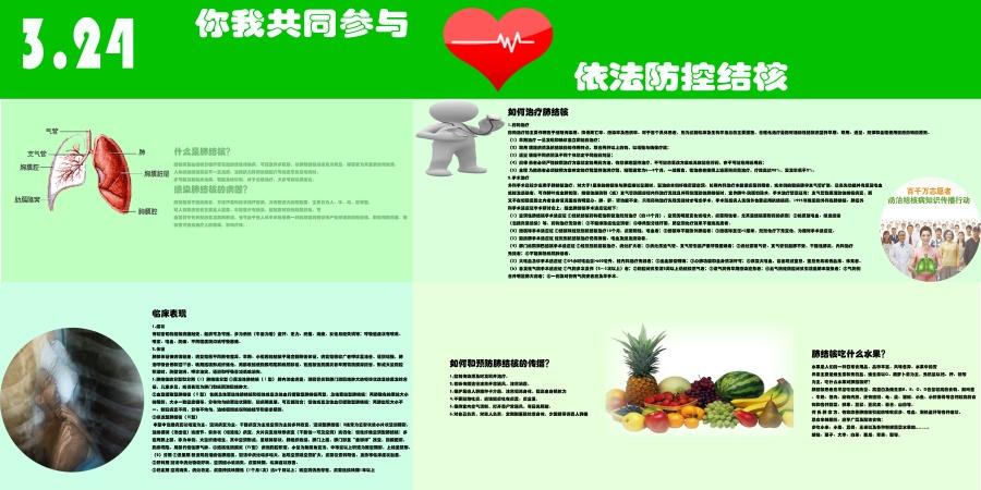 结核病防治知识宣传展板设计(2/13)