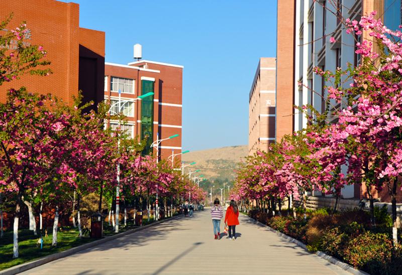 云南经济管理职业学院风景图片