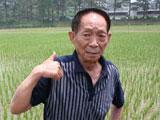 袁隆平:期待粉垄技术在全国推广