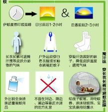 [图解]防登革热 专家支招如何有效防蚊