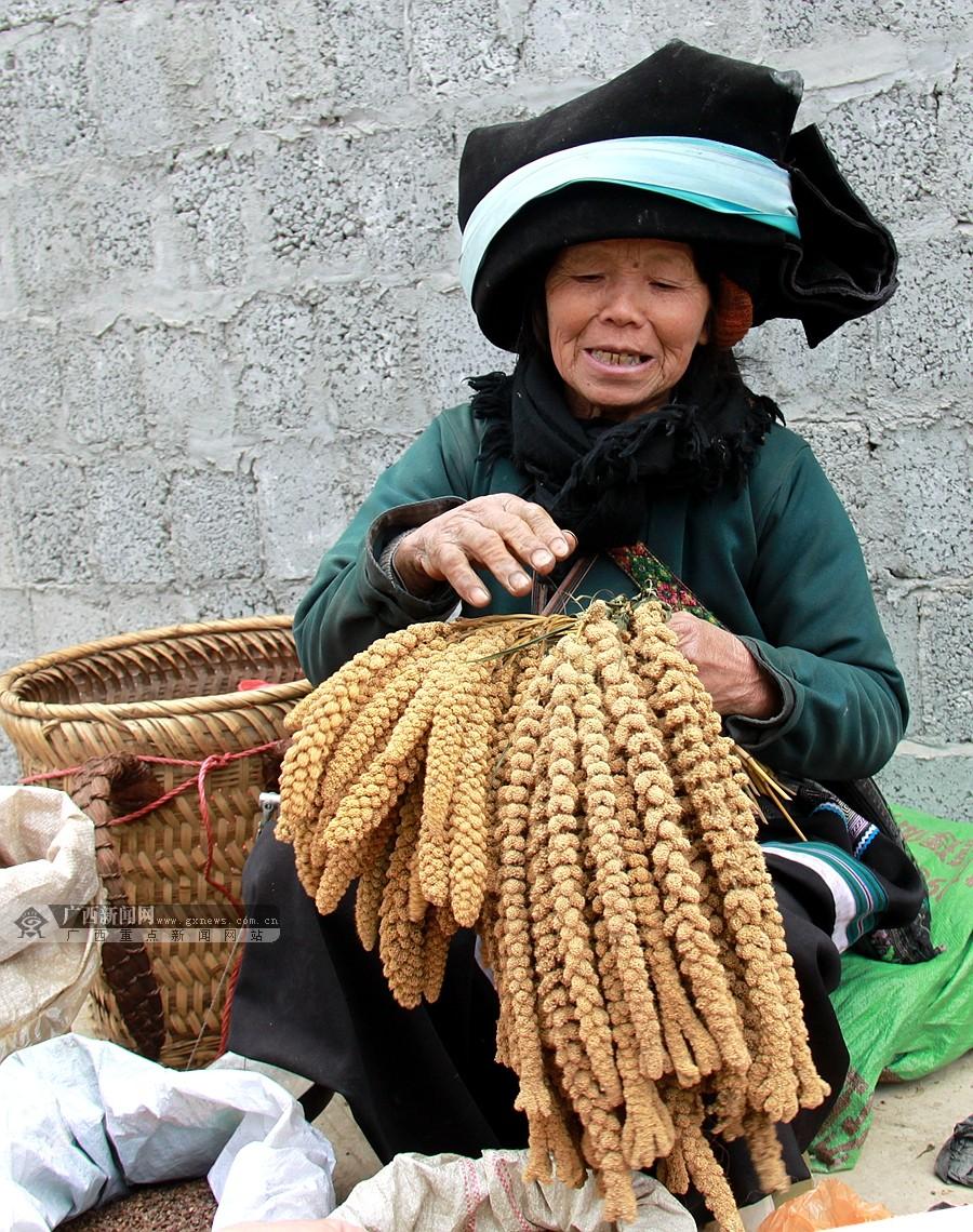 这儿地处桂西北,聚居着苗,彝,仡佬,壮,汉等五个民族,少数民族人口占全