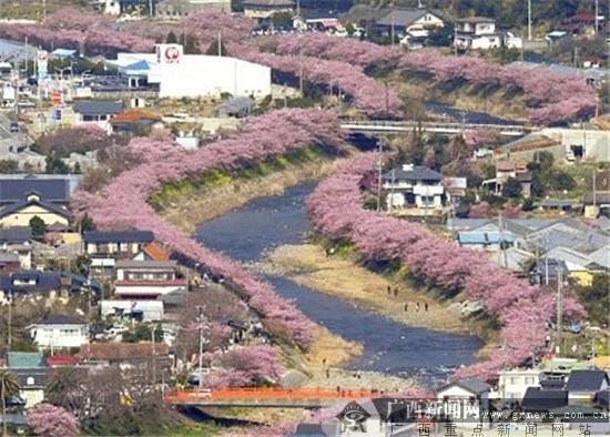 广西直飞日本大阪、静冈航线将于今年五月启航