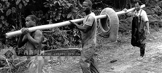 男子只身入非洲探访上林淘金客图片