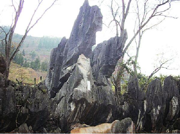 百色西林岩腊寨小石林印记图片
