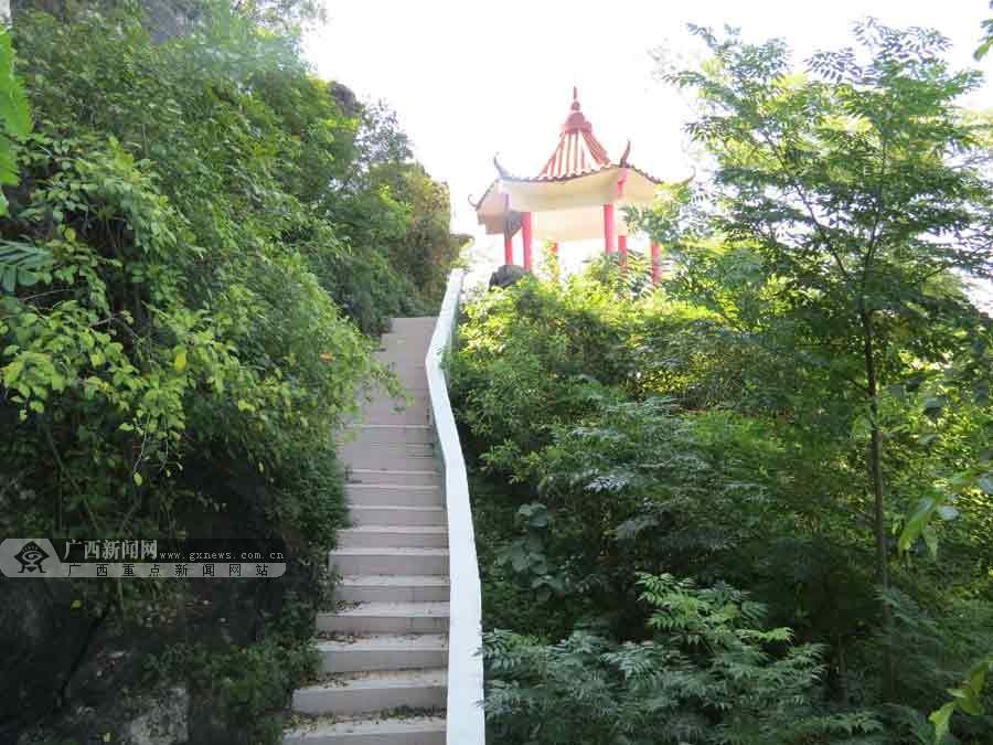 广西扶绥风景油画