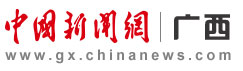 第六届广西网络媒体峰会协办单位
