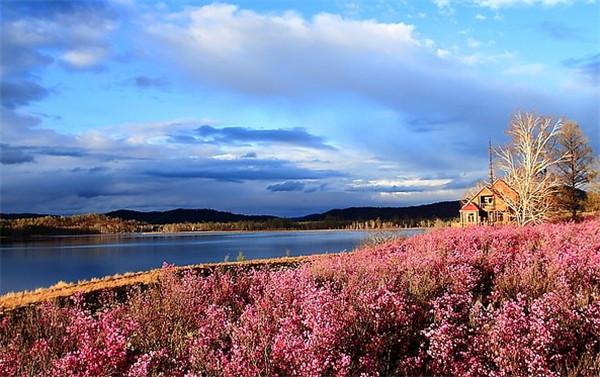 秋季旅游之森林篇:鄂伦春达尔滨湖国家森林公园