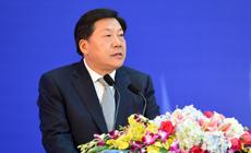 鲁炜在中国―东盟信息港论坛上发表主旨演讲