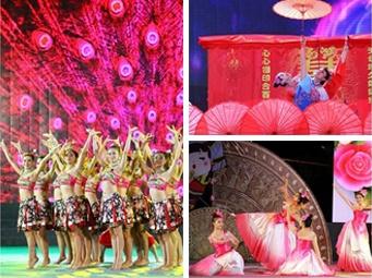 高清:南宁第六届乡村社区和谐文艺大展演上演