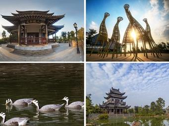 高清:秋日五象湖——湖光秋叶两相和
