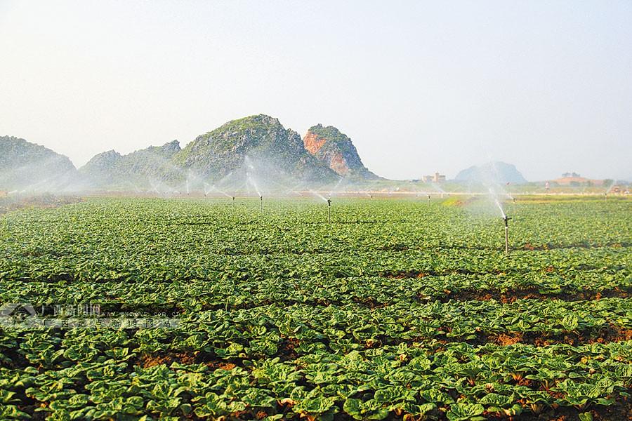 富川:建设生态乡村 留住绿水青山_广西新闻网精彩图集
