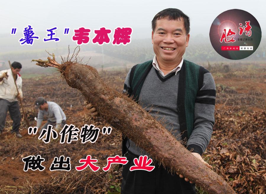 """脸谱:""""薯王""""韦本辉  """"小作物""""做出大产业"""