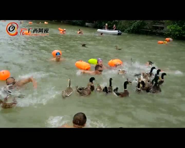 """首届全国冬泳""""水上抢头鸭""""比赛紧张激烈"""