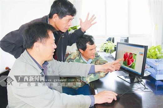 广西财政:凝心聚力促发展 千方百计稳增长
