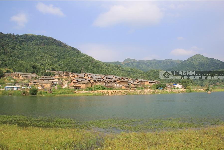 上林县创新帮扶模式 产业化精准扶贫促群众增收