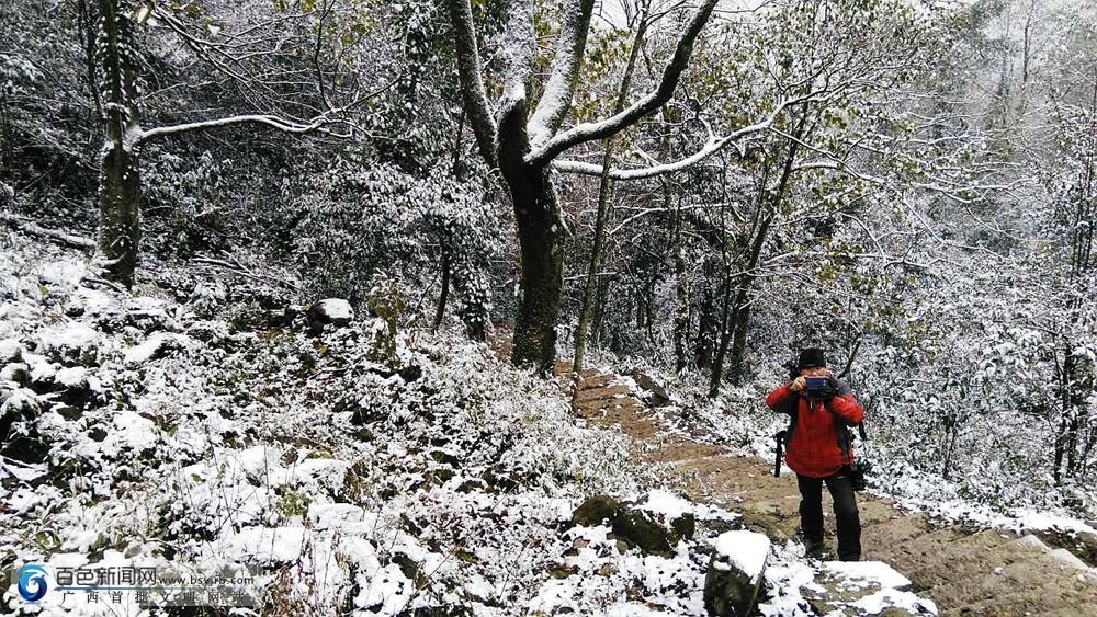乐业真的下雪啦!五台山景区银装素裹(组图)