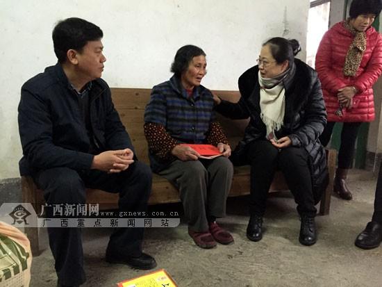"""广西文化科技卫生""""三下乡""""到蒙山县开展集中服务"""
