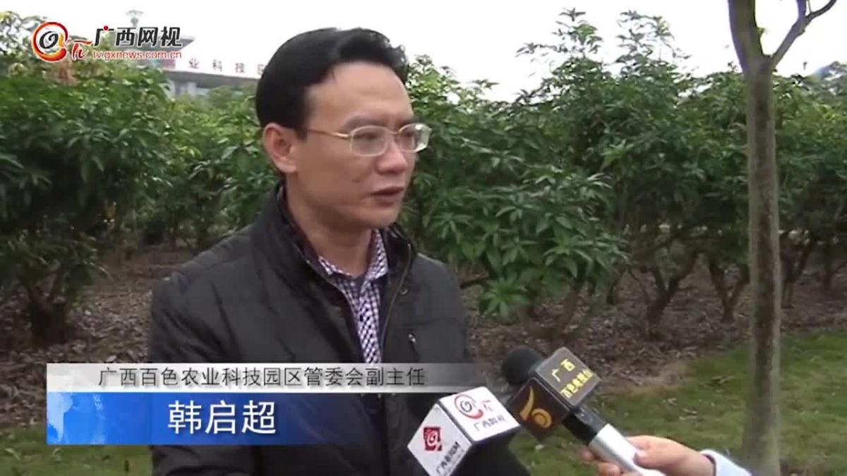 田阳农业示范园区的四个主要职能介绍