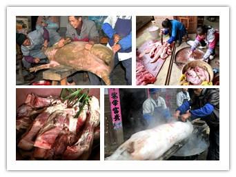 高清:百色凌云村民杀年猪过新年