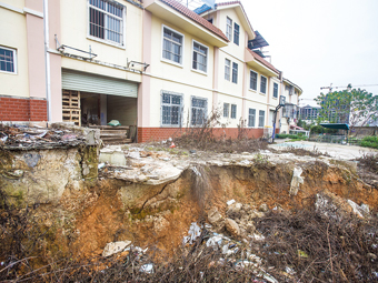 广西花鸟交易市场发生塌方 疑与道路建设有关(图)