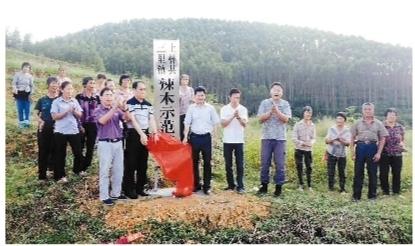 上林:扶贫专干奋斗在希望的田野上