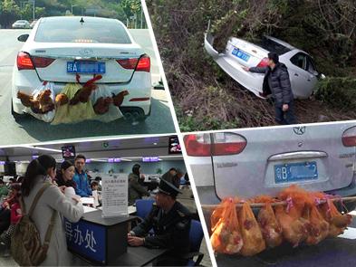 """2月15日焦点图:南宁版""""后置发动鸡""""走红"""