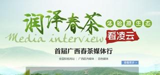 首届广西春茶媒体行