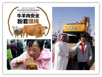 28日焦点图:南宁活羊批发交易市场竟无营业执照