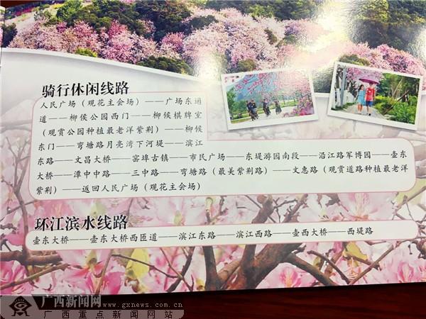 """广西""""壮族三月三"""" 柳州邀您来听歌赏花品美食"""