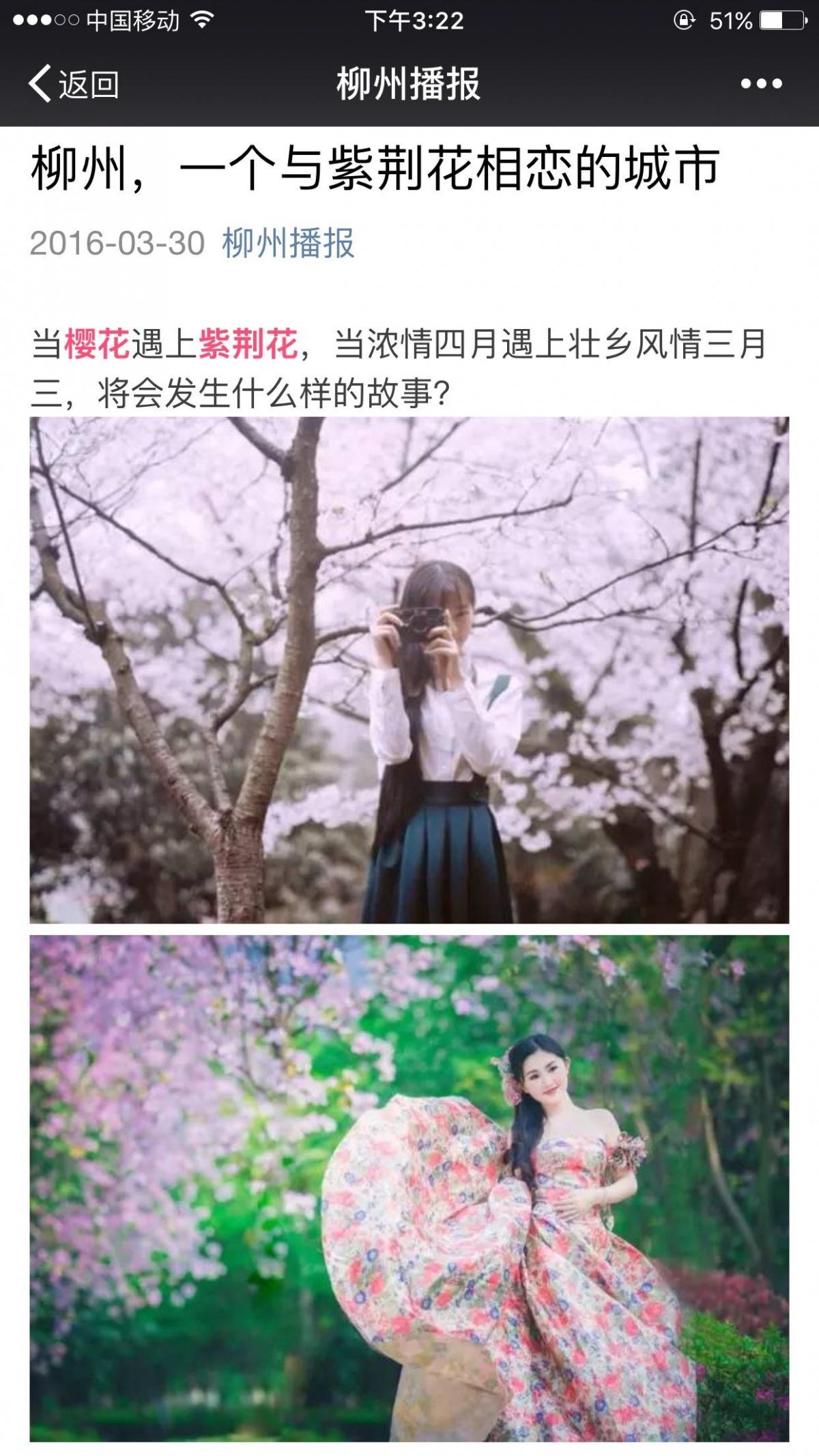 柳州,一个与紫荆花相恋的城市